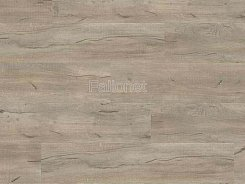 Gerflor Creation 30 Lock 0795 Swiss Oak Cashmere